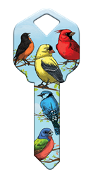 HK54 - Birds happy, key, bird, birds, cardinal, oriole, yellow, finch, blue, jay, summer, house, keys, kw, sc1, wr5